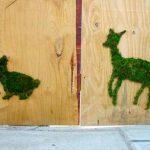 Graffiti vert : mousse et graines remplacent bombes et marqueurs