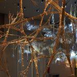 (Portfolio) Biomimétisme : le design urbain s'inspire de la nature