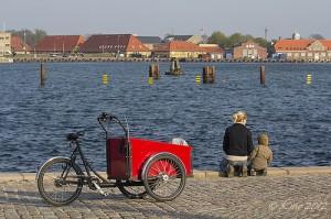 Quelle sera la Capitale verte européenne en 2016 ?