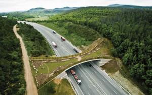 « Infrastructures pour la mobilité et biodiversité » : sept projets récompensés