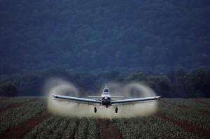 Pesticides et collectivités : usage restreint autour des écoles, hôpitaux et maisons de retraite